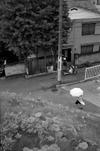 Tamagawa_4